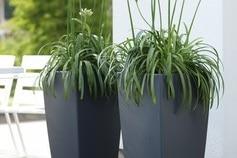 Pot plantes Elho extérieur